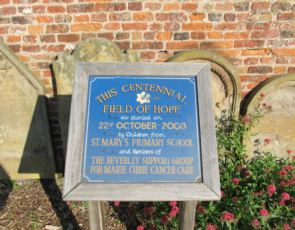 Plaque: Centennial Field of Hope by Children of St Mary's Primary School 2003